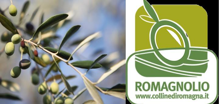Olio Colline di Romagna