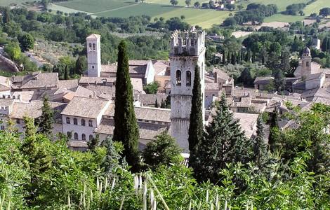 Assisi, apre il Bosco di San Francesco