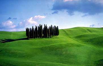Paesaggio toscano ©Diritti riservati