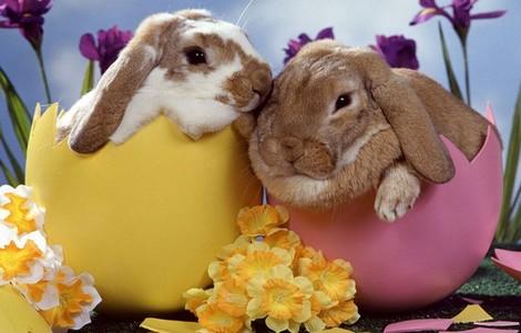 Pasqua, tradizioni e riti