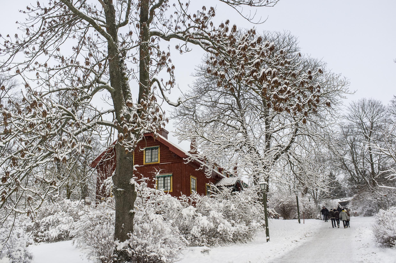 Svezia in inverno
