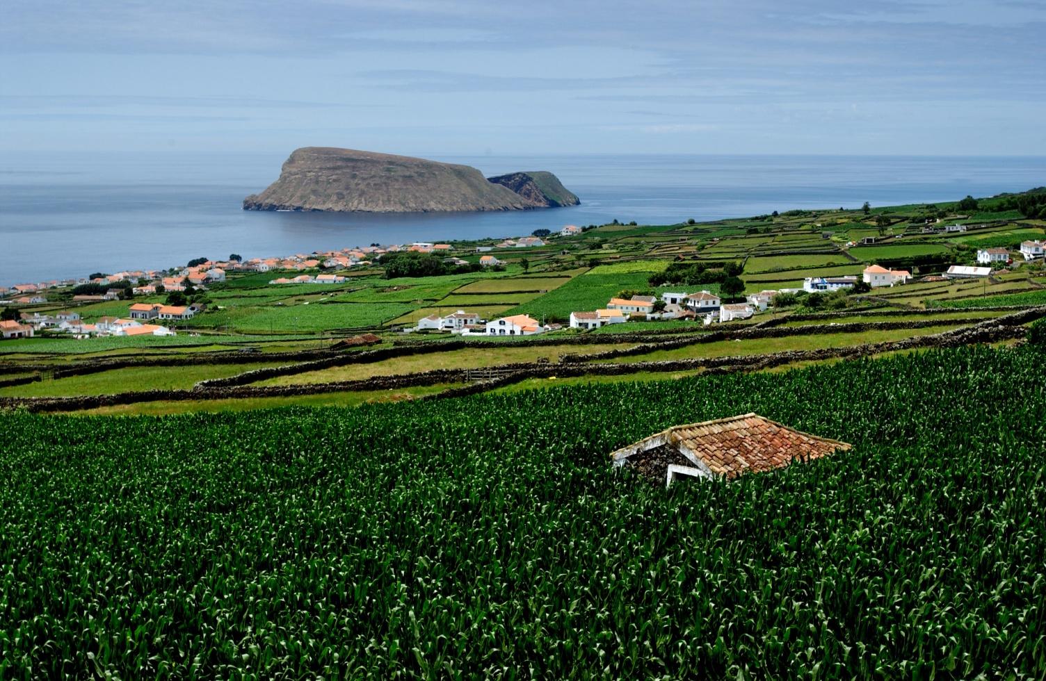 Panorama di Terceira, Azzorre. Foto Associacao de Turismo dos Acores