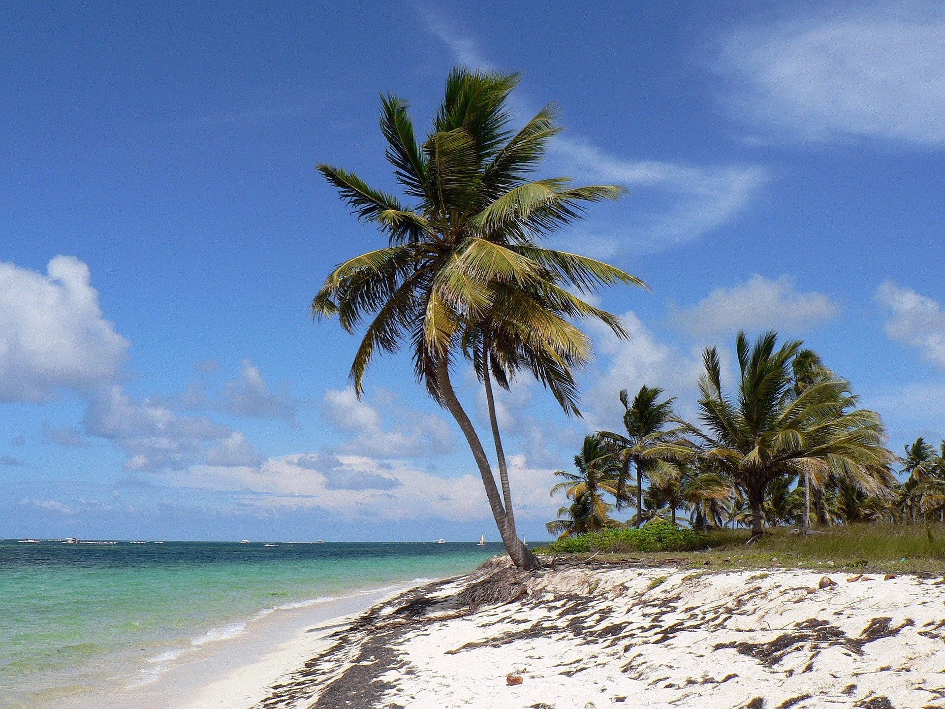 Repubblica Dominicana - Foto di Albert Dezetter da Pixabay