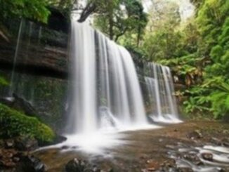 Viaggio in Tasmania