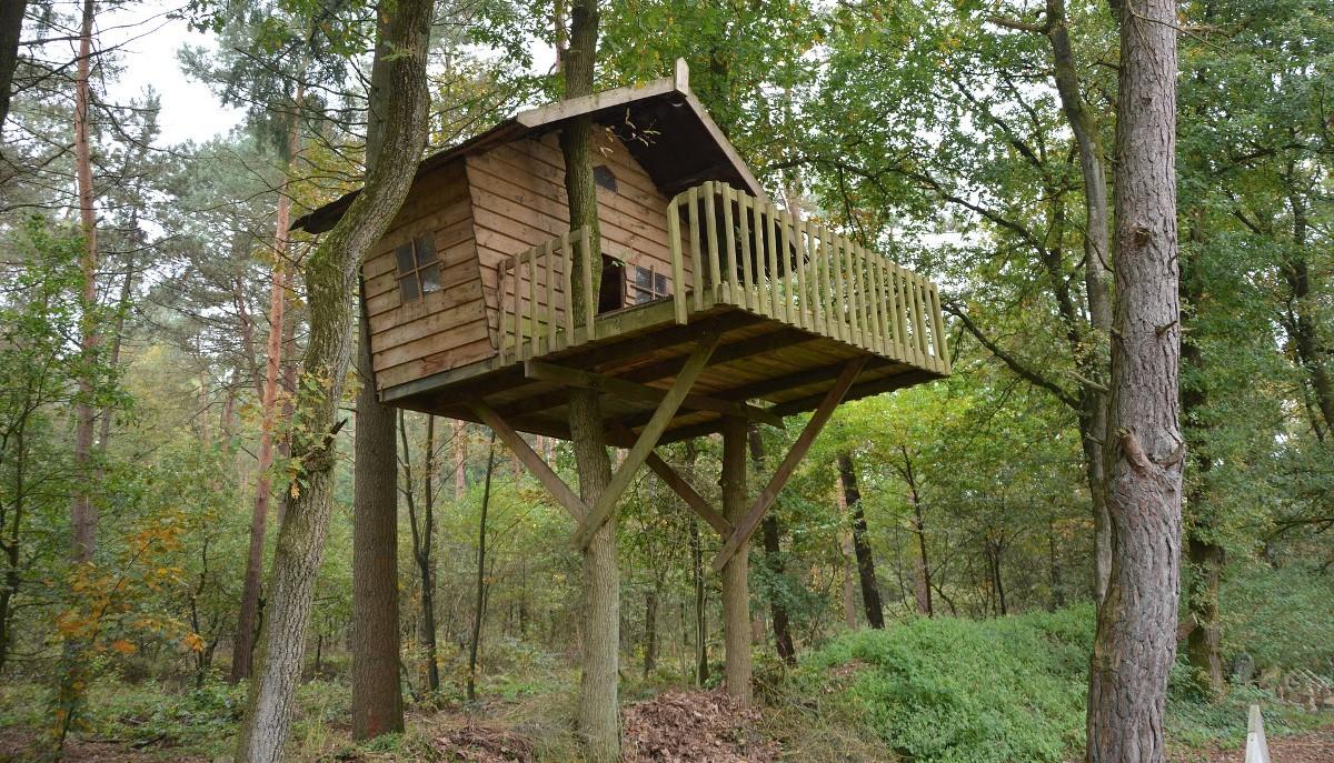 Casa sull'albero del Tree Village a Claut, Friuli Venezia Giulia