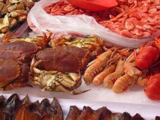 shopping di pesce in versilia