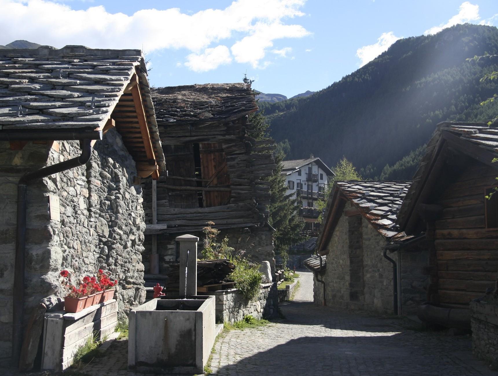 Chamois in Valle d'Aosta ©Foto Anna Bruno