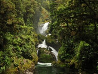 Milford Track Falls - Foto© Active Adventures New Zealand