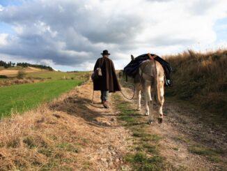 Le Chemin Stevenson - Foto© Michel Verdier / Association Sur le chemin de R.L.Stevenson