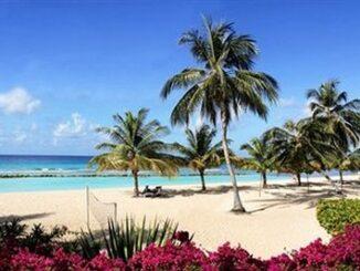 Splendido paesaggio delle Barbados ©Expedia