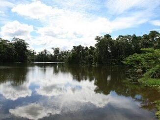 Laguna San Pedro Joya de los Sachas, suggestivo paesaggio dell'Ecuador ©Ministerio de Turismo del Ecuador
