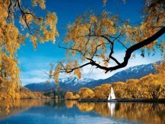 Splendido paesaggio della Nuova Zelanda ©NewZeland.com