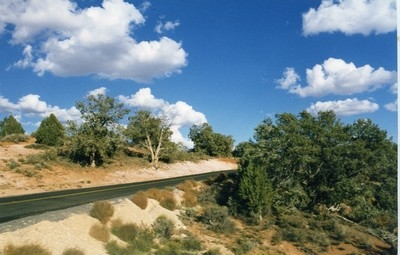 Splendido paesaggio nello Utah, Stati Uniti ©Foto Anna Bruno