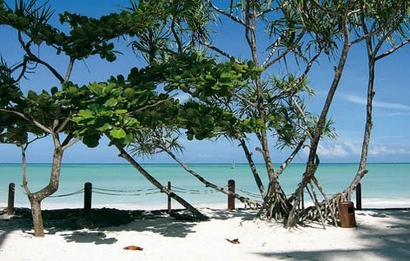 Una spiaggia di Zanzibar