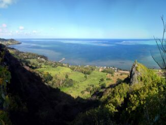 Mauritius, Bois des Amourettes - ph carrotmadman6 via Wikipedia