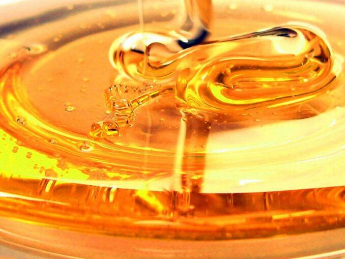 40 anni di miele a Montalcino