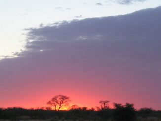 Tramonto in Botswana - ph Matt-80 via Wikipedia