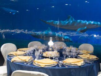 Capodanno presso l'Acquario di Genova - ph via sito ufficiale Acquario di Genova