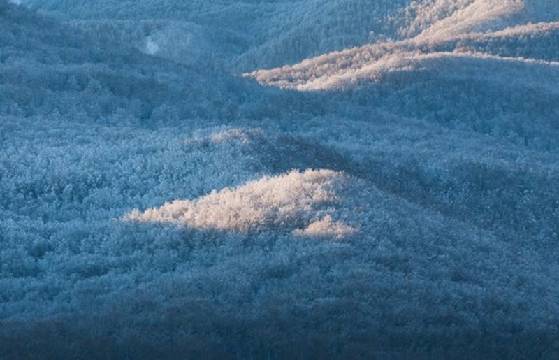 Il Parco Nazionale d'Abruzzo innevato