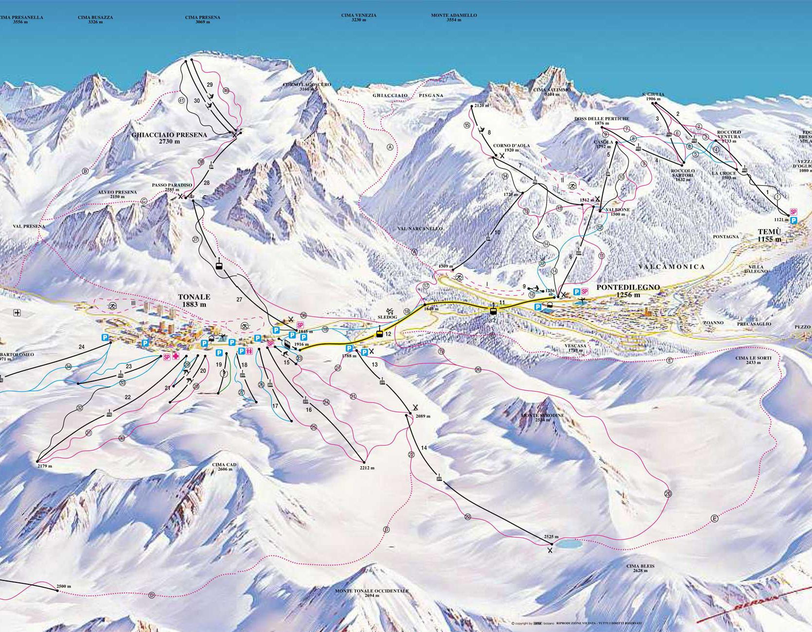 Adamello Ski, piste