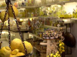 Limoni in Costiera Amalfitana