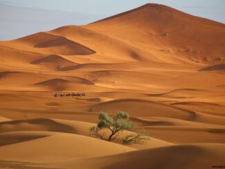 Deserto del Marocco - ph Evolution Travel