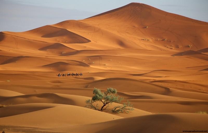 Deserto del Marocco - ph Evolution Travel