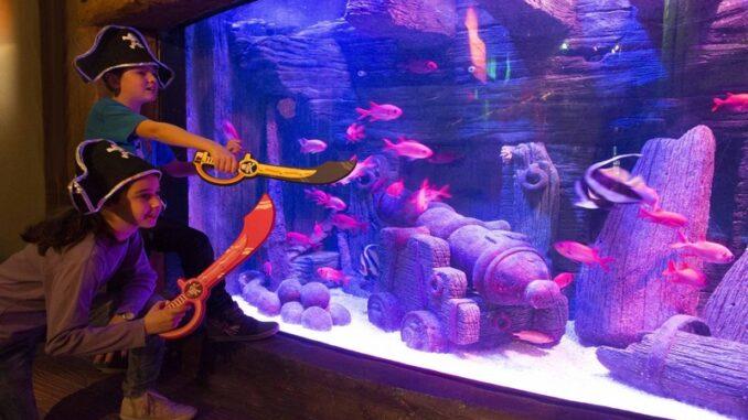 Carnevale 2016 al Gardaland SEA LIFE Aquarium