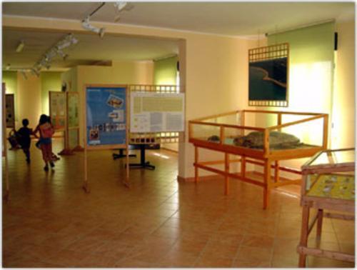 Museo naturalistico del Comune di Lesina