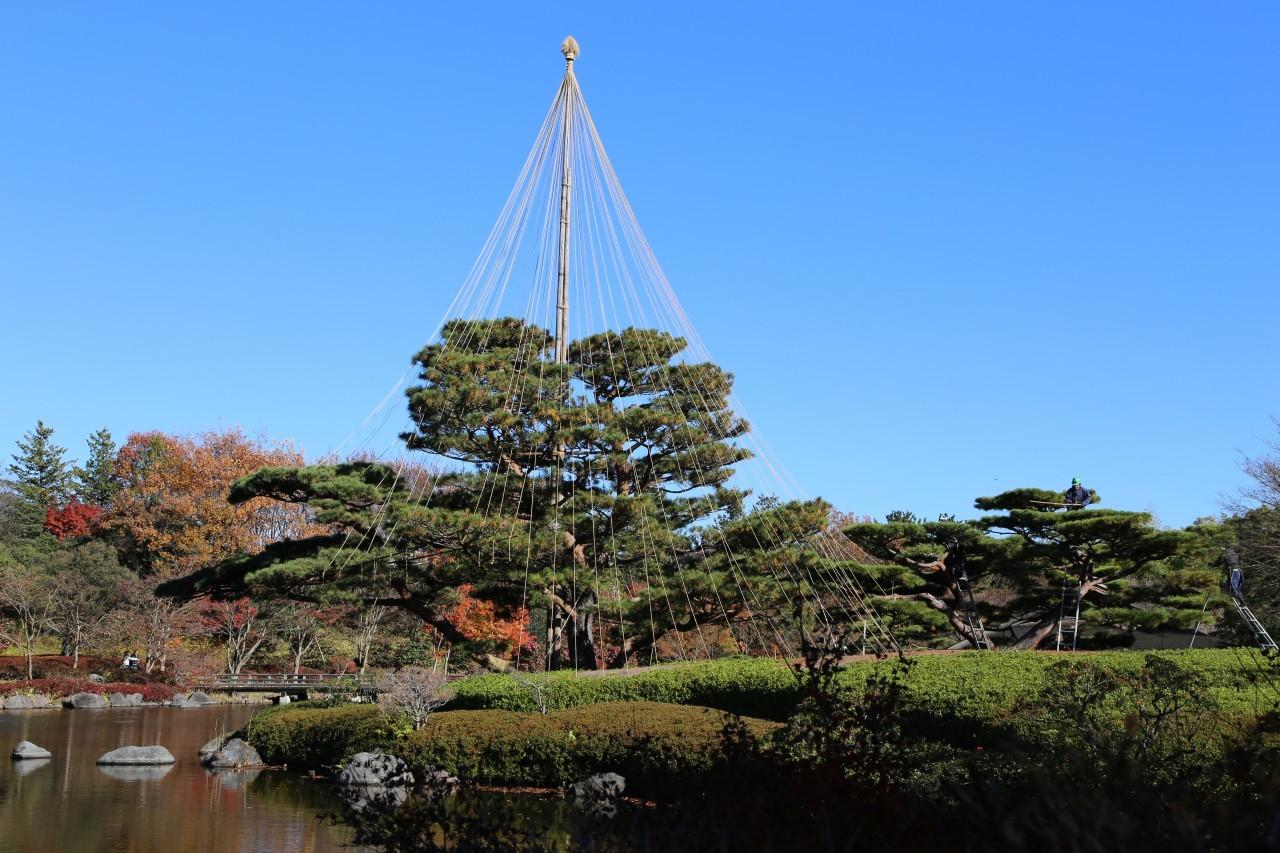 Showa Kinen Park, Tokyo