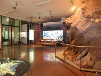 Museo di scienze naturali dell'alto Adige