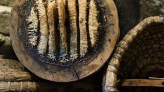 Museo dell'apicoltura - Maso Plattner