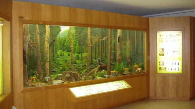 Museo naturalistico di Asiago