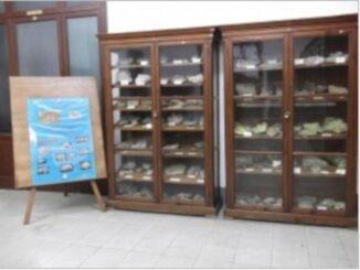 """Museo di scienze naturali dell'ITG """"Filippo Parlatore"""""""