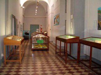 Museo dei fossili dello Stirone
