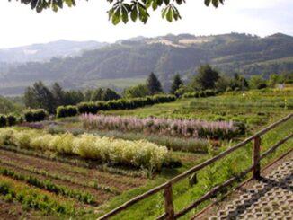 """Giardino delle erbe """"A. Rinaldi Ceroni"""""""