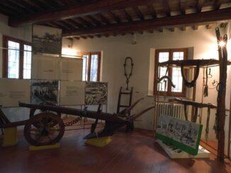 Museo della frutticoltura Adolfo Bonvicini