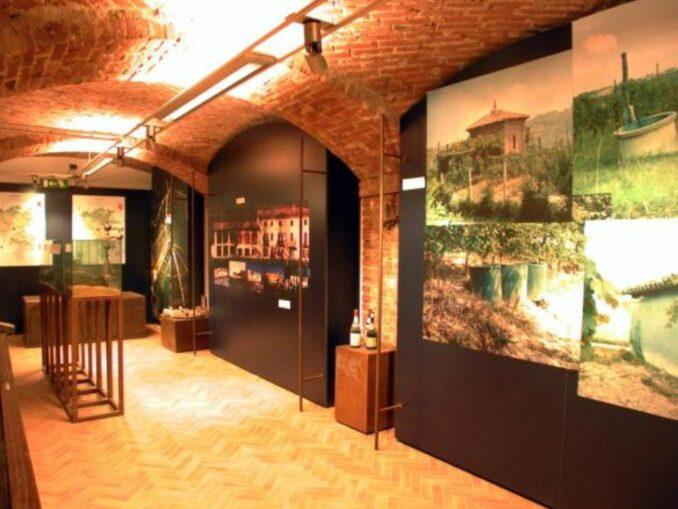 Museo della Barbera