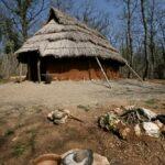 Parco archeologico naturalistico di Belverde e Archeodromo