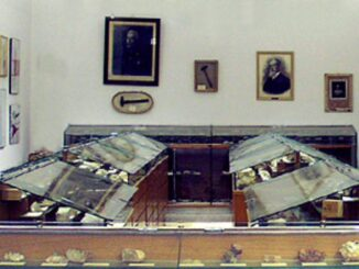 "Museo di mineralogia ""Leonardo De Prunner"""