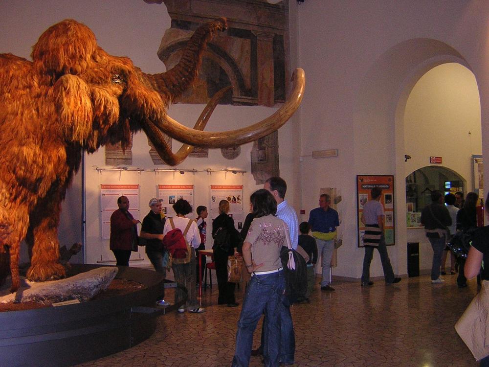 Museo civico di scienze naturali Enrico Caffi, Bergamo