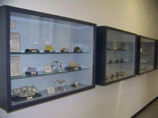 Civico museo di scienze naturali G. Orlandi
