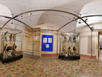 Museo ornitologico di Chiaramonte Gulfi