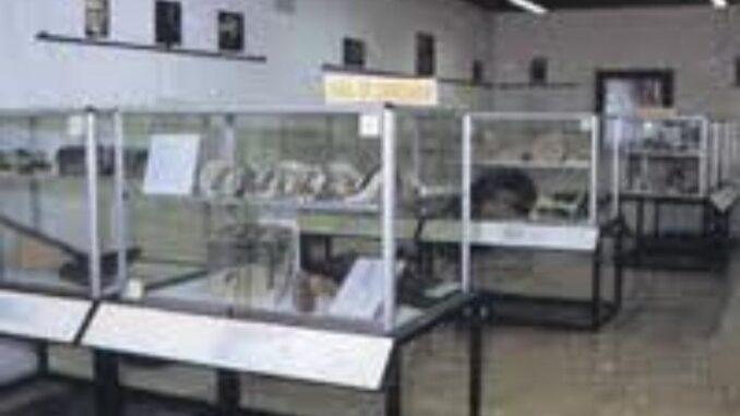 Museo paleontologico di Sona