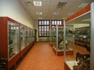 Museo ornitologico di Piacenza