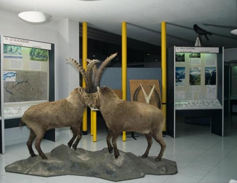 Museo del centro visitatori del Parco nazionale del Gran Paradiso di Noasca