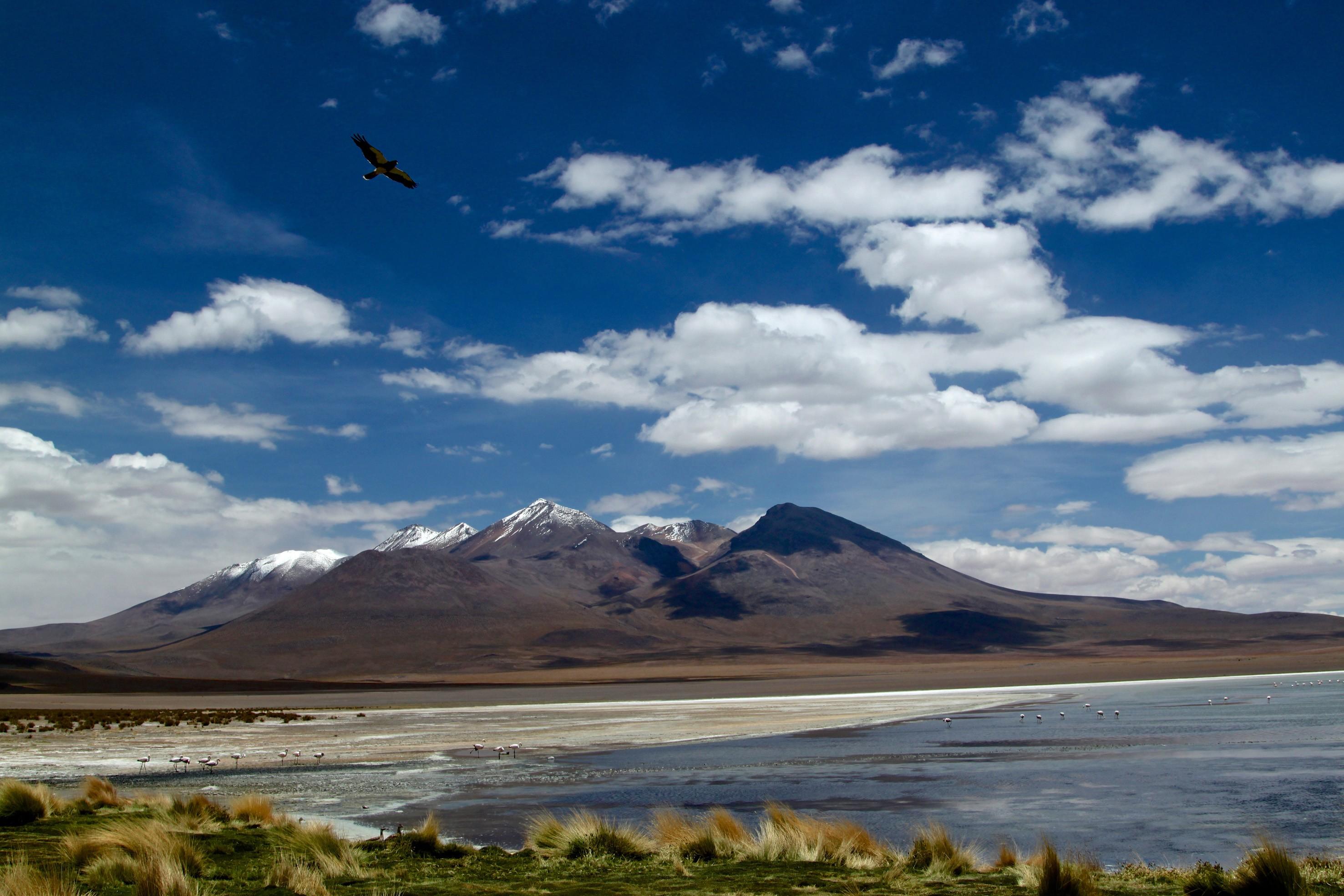 Salar di Uyuni, deserto di sale in Bolivia