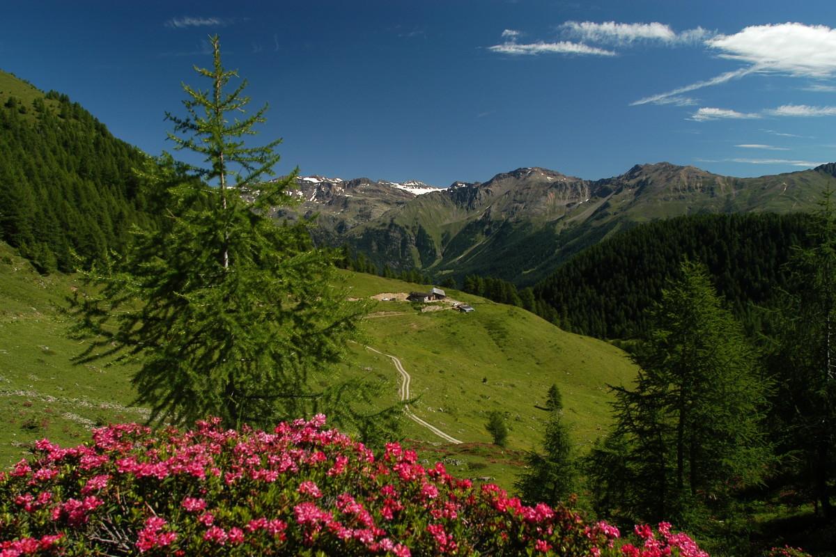 Trentino, luogo ideale per il wellness e il relax