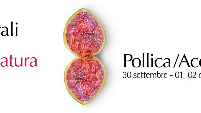 Stati Generali Letteratura del Sud, Pollica