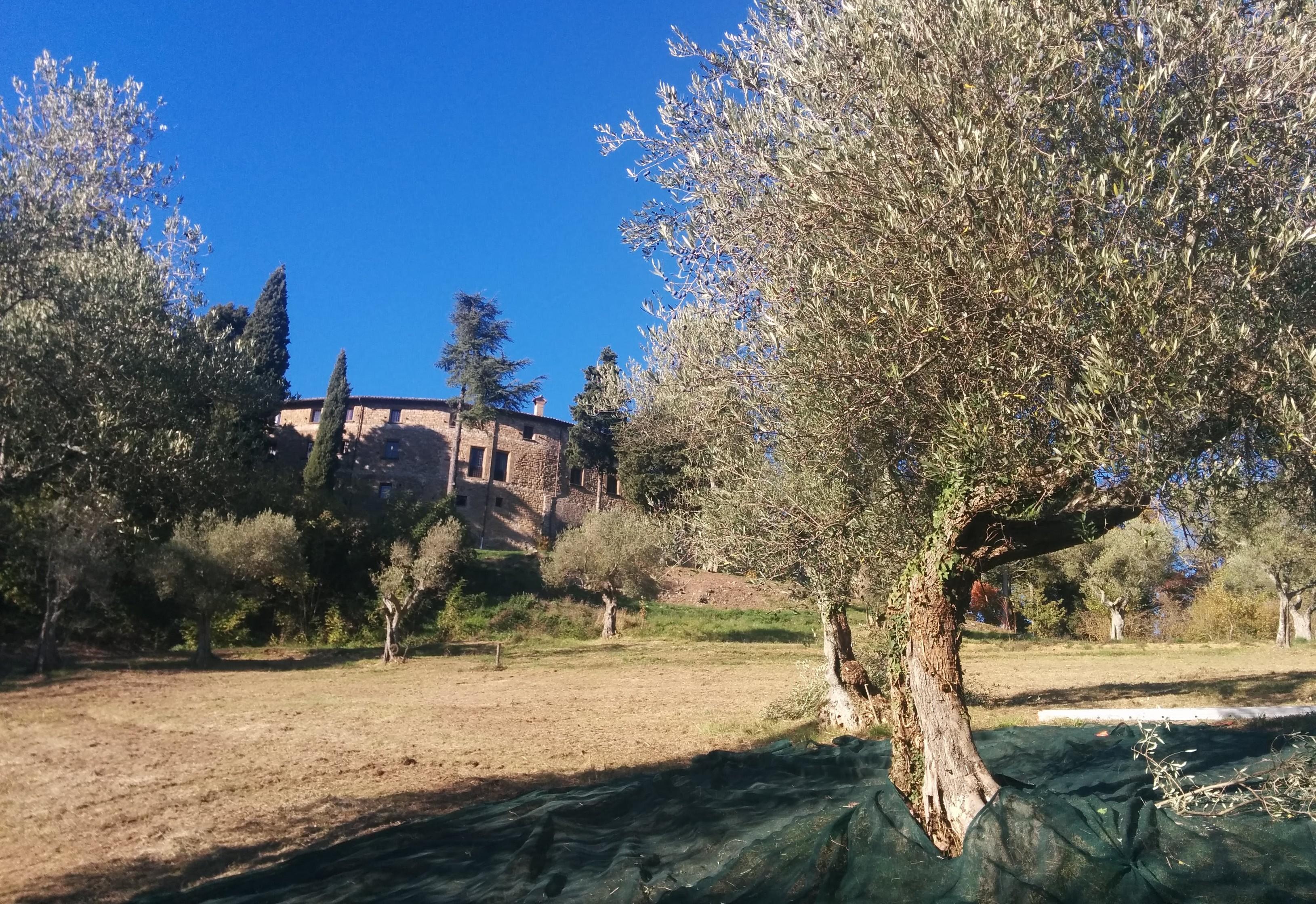 Castello di Petroia, esterno
